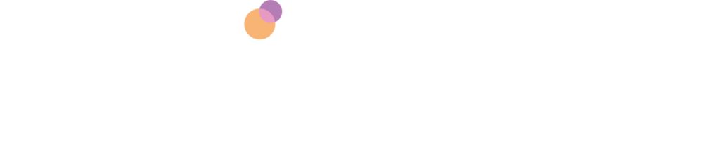 Netinspire Logo White