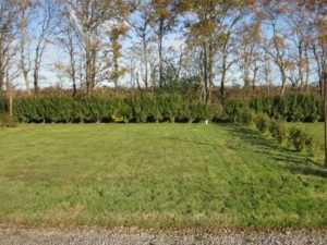 typical-plot-vendee-1