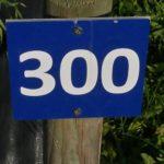 Plot Number Plot 300 Vendee (15)