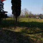 Magnum Tuscany View