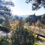 Toscana Holiday Village Tuscany Caravans In The Sun Italy Italian January Weather Pisa (14)