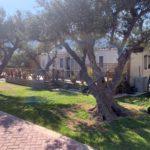 Alykes Mobile Home Park Greece Caravand In The Sun (7)