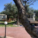 Alykes Mobile Home Park Greece Caravand In The Sun (8)