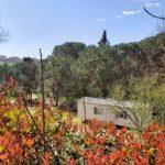 Toscana Holiday Village (4)