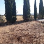 04 Plot View Willerby Avonmore 13 Orange Grove Saydo Park Costa Del Sol Spain (20)