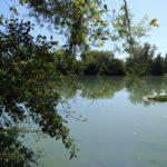 Dordogne France (5)