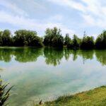 Bergerac Residential (5)
