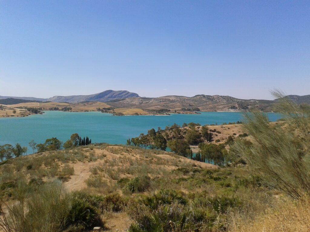 Reservoir (4)