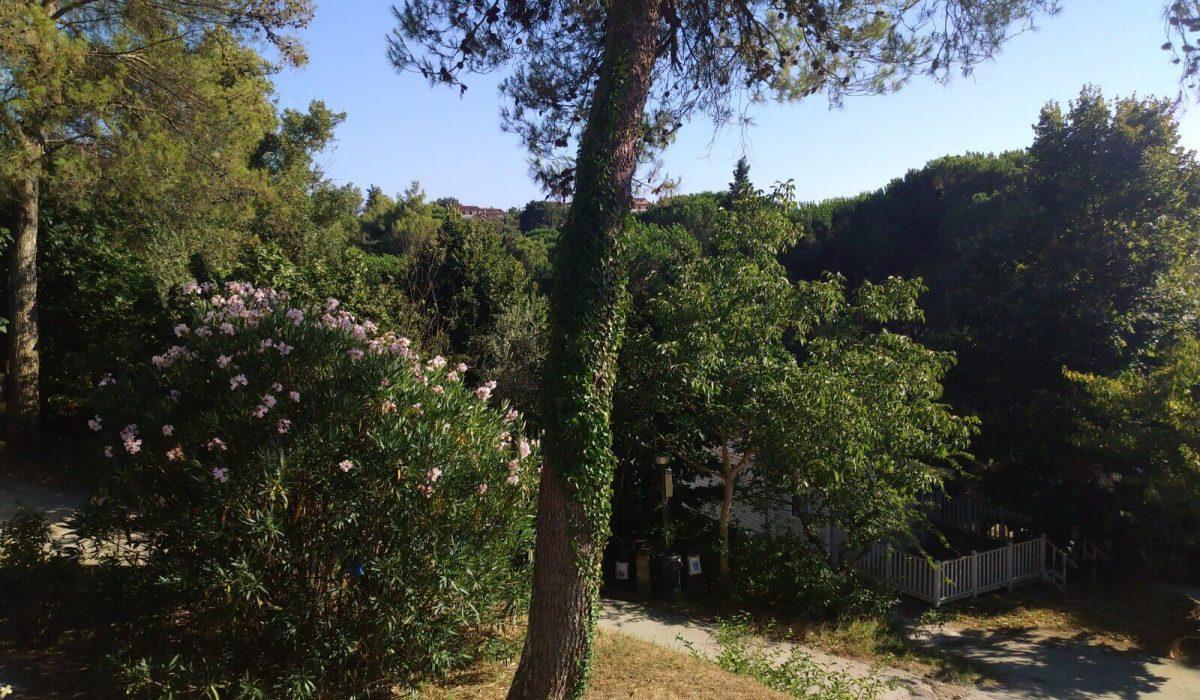 10 Exterior Willerby Rio Special Plot 66 Toscana Holiday Village Tuscany Italy (19)