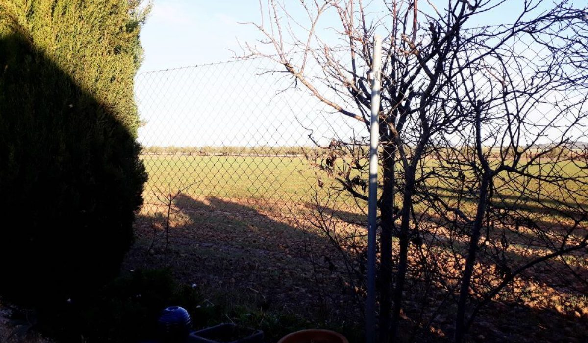 15 Orange Grove (2)