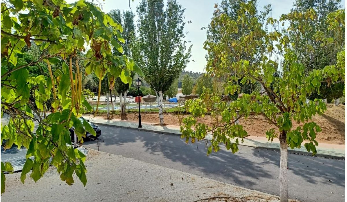 Atlas Tempo Humilladero Spain 1 Tree (8)