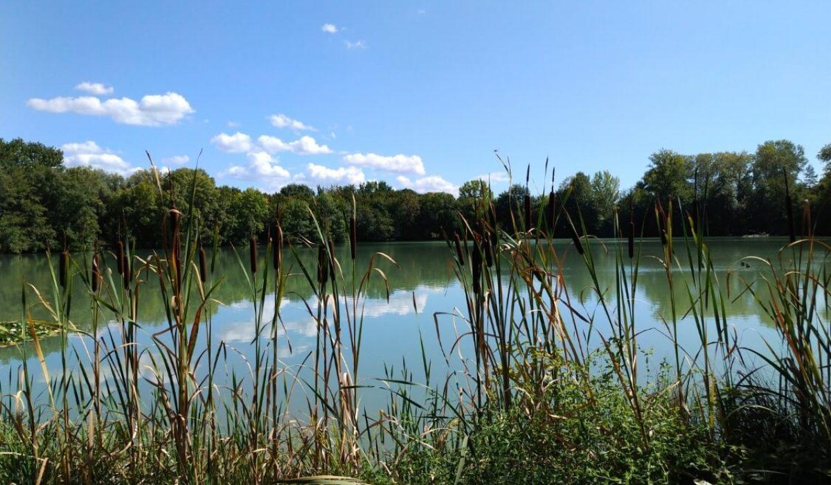 Bergerac Residential Photos Sept 2020 (4)