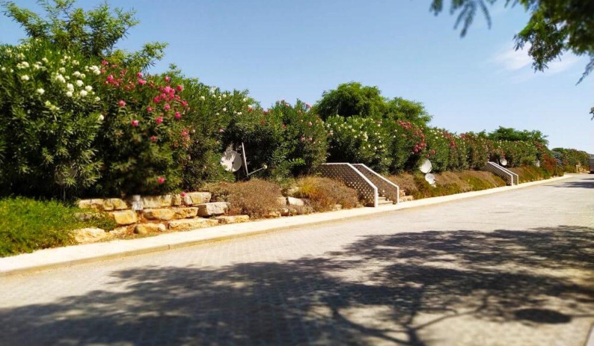 New Tavira Cabernas Park Photos (7)