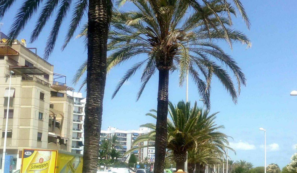 Peniscola Costa Del Azahar Spain Caravans In The Sun Mobile Homes For Sale (23)