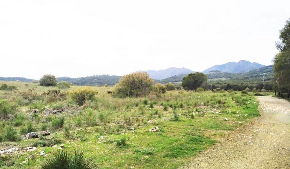 Sierra Blanca Malaga (1)