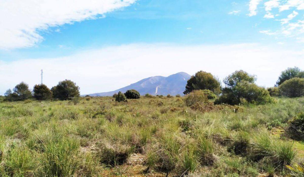Sierra Blanca Malaga (5)