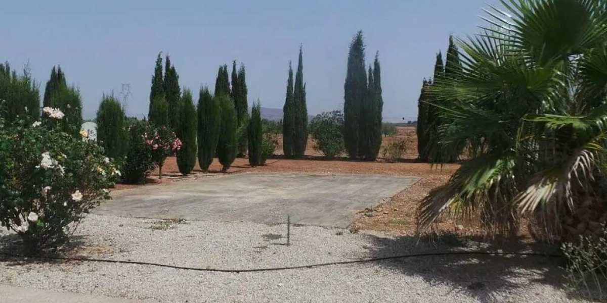 Antequera Saydo Park 11