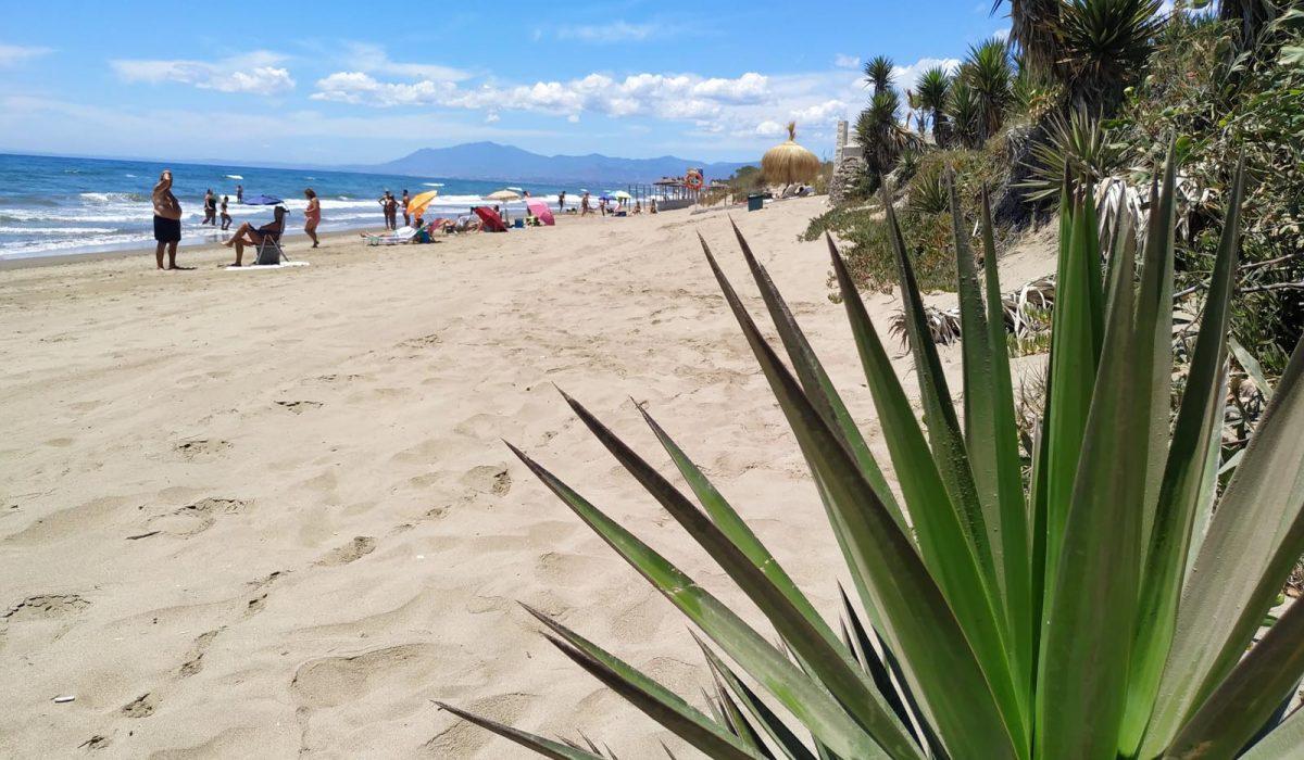 Marbella Buganvilla Beach 10 Minutes Walk