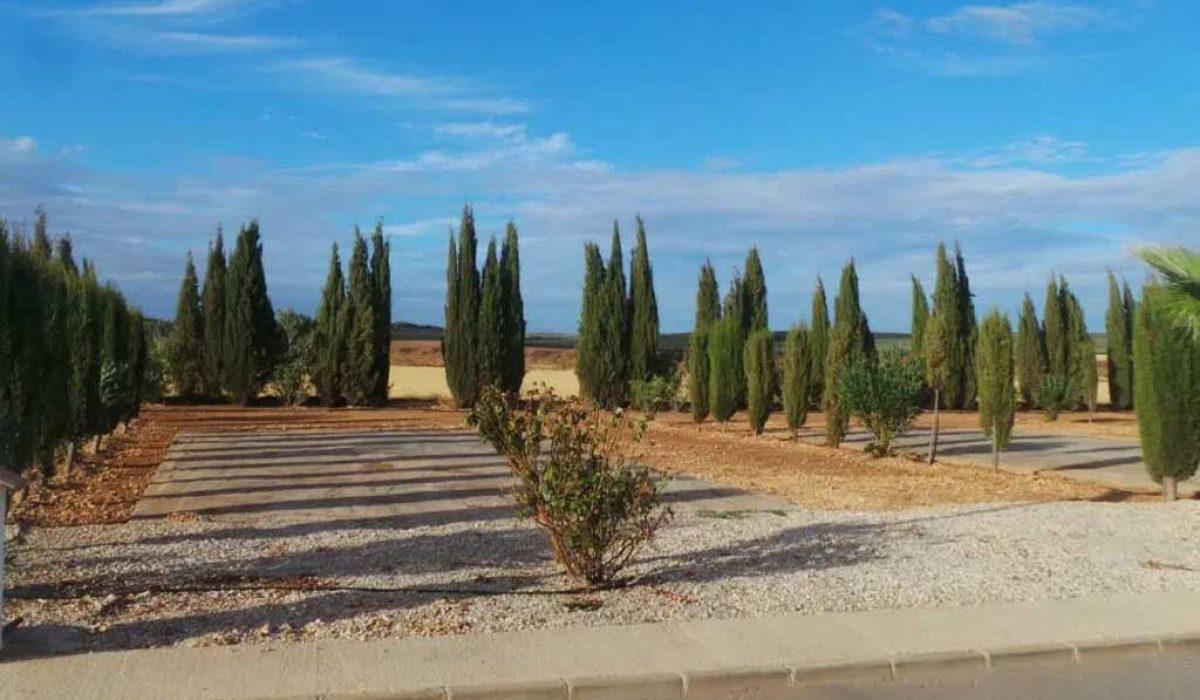typical-plot-antequera-saydo-park-6